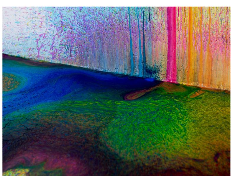 Multidisciplinary Artist Rutger de Vries