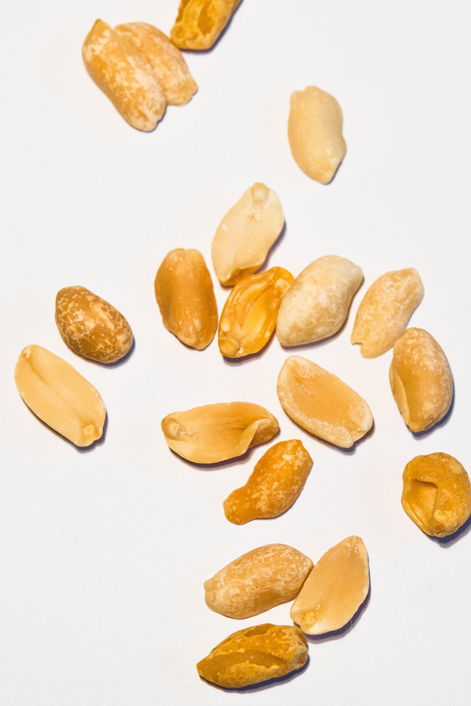 Eva Dittrich, peanuts, 2019