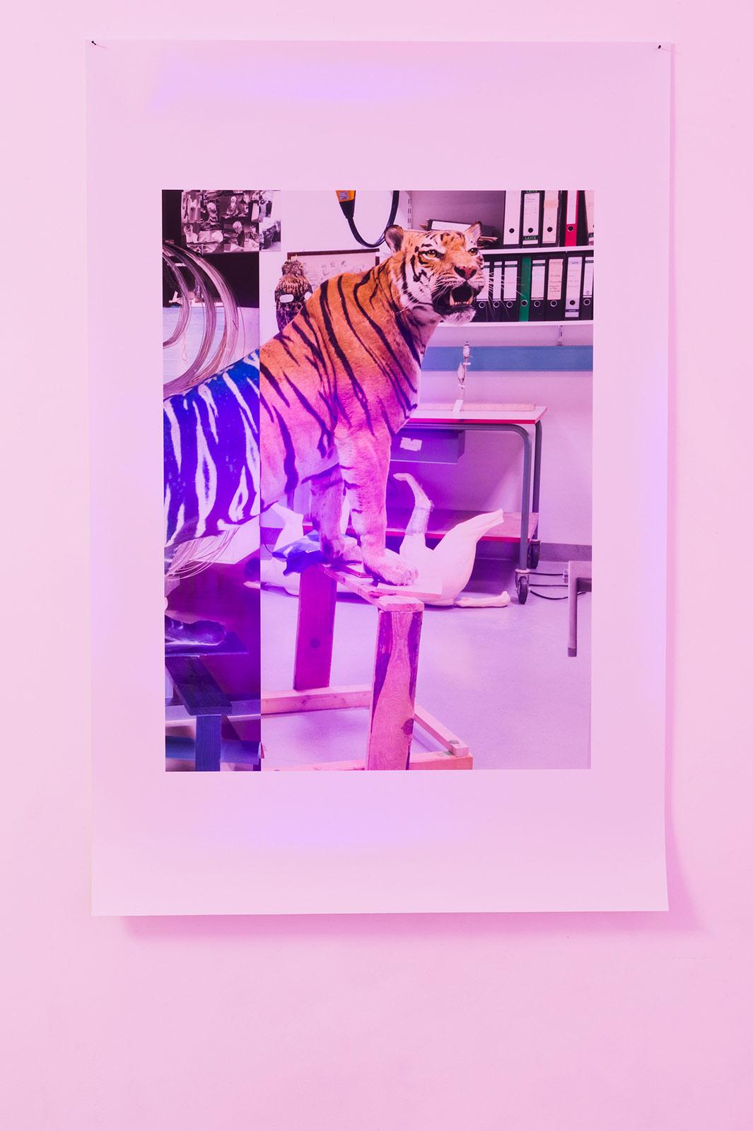 Eva Dittrich, Selfportrait, 2017